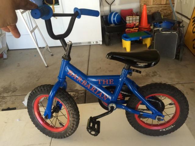 powder-coated-barbarian-blue-bike